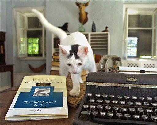 Hemcats