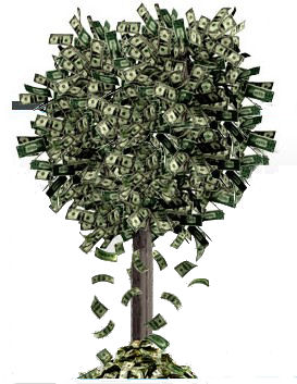 Money-tree1